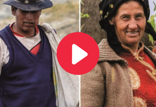 The UN Declaration on the Rights of Peasants: A Tool to Protect the Right to Land