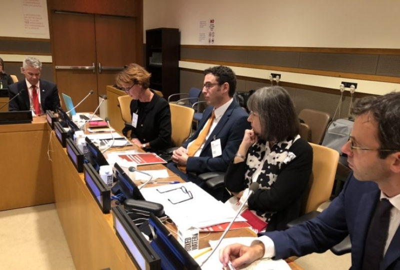 Presentation of the Guidelines in New York